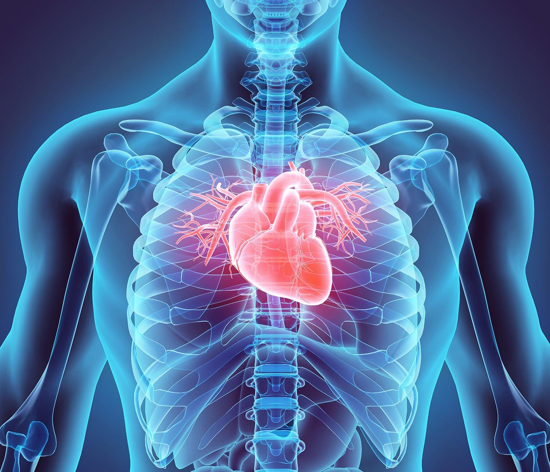 Berita Otopsi 2021: Kerusakan Jantung pada Pasien COVID-19